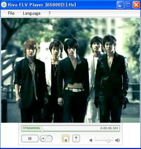 2015's-Player-|-Riva-FLV-Player-For-Windows-7,-8.1-Free-Download