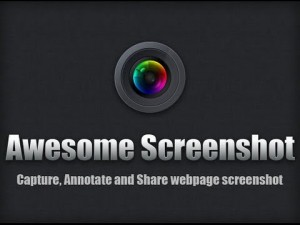 Awesome Screenshot Extension Features